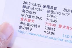IMG_4505_20120501_600.JPG