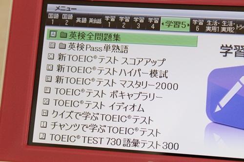IMG_7071_500.JPG